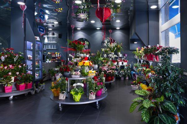 fiorito negozio