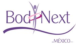 Body Next Logo