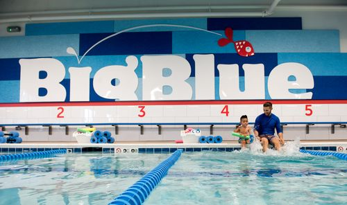 Start  Big Blue Swim School Franchise