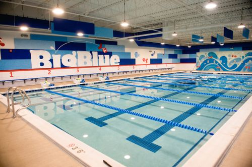 Big Blue Swim School Franchise Business For Sale